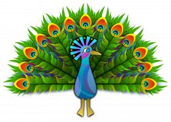 Peacock Clipart at GetDrawings.com | Free for personal use Peacock ...