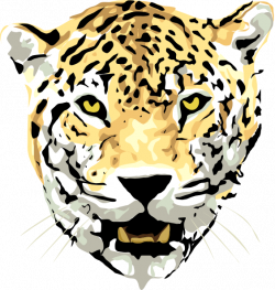 Free Leopard Clipart