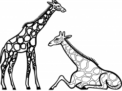 Black And White Animals Drawing at GetDrawings.com | Free for ...