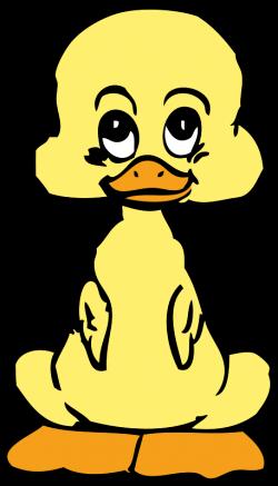 Free baby duck PSD files, vectors & graphics - 365PSD.com