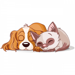 dog & cat clipart | Cartoon Cat And Dog Clip Art Pictures | dog ...