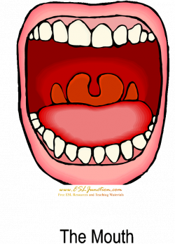 Mouth Clipart at GetDrawings.com | Free for personal use Mouth ...