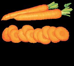 Carrot Vegetable Fruit Clip art - carrots clipart 1280*1156 ...