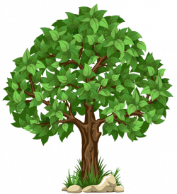 Transparent Tree PNG Clipart Picture | Planner Happiness | Pinterest ...
