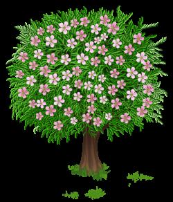 Весна дерево Прозрачный PNG изображения Clipart   Деревья ...