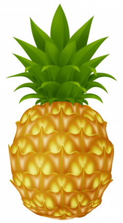 Pineapple PNG Picture | (clip art) EVERYTHING FOR A GARDEN ...