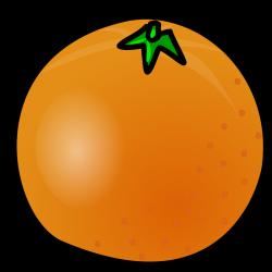 Orange Fruit   Free Stock Photo   Illustration of an orange   # 14483