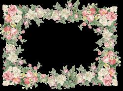 Vintage Pink | free vintage flower frame png: white and pink roses ...