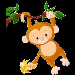 Monkey Clipart Transparent Background & Monkey Clip Art Transparent ...