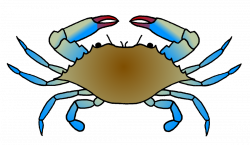 Blue Crab Drawing at GetDrawings.com | Free for personal use Blue ...