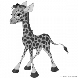 Baby Giraffe Clipart - ClipartBlack.com