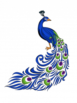 28+ Collection of Peacock Clipart Images   High quality, free ...