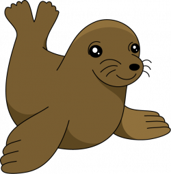 28+ Collection of Cute Sea Lion Clipart | High quality, free ...
