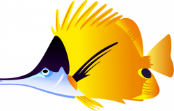 tropical fish clip art for | ANGEL, BETTA, CLOWN, & OTHER FISH ...