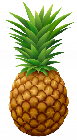 Pineapple PNG Vector Clipart Image | Gallery Yopriceville - High ...