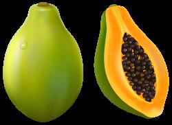 Papaya PNG Vector Clipart Image | Pintura em tecido frutas ...