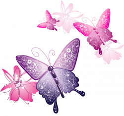 Transparent Butterfly Decorative Clipart | Gallery Yopriceville ...