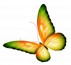 Yellow and Green Transparent Butterfly Clipart | Gallery ...
