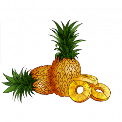 Pineapple, Food, Green PNG and PSD File for Free Download