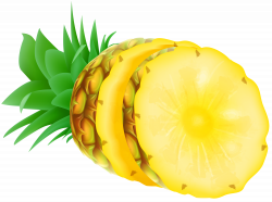 Pineapple PNG Clip Art   Gallery Yopriceville - High-Quality Images ...