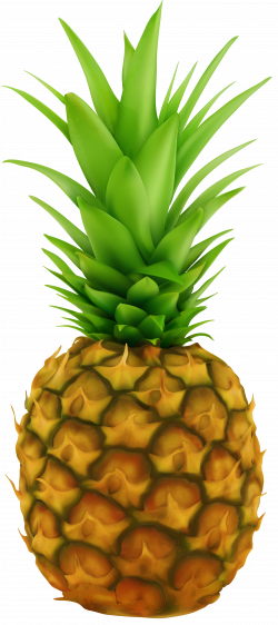 Pineapple Transparent Clip Art Image   Gallery Yopriceville - High ...