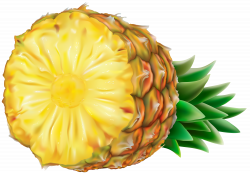 Pineapple Transparent PNG Clip Art   Gallery Yopriceville - High ...