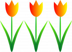 Spring Flower Clip Art Borders Image collections - Flower Decoration ...