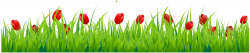 Grass with red tulips clipart 0 | vector | Pinterest | Red tulips ...