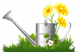 Spring Decoration with Water Can Grass and Flowers PNG Clipart ...