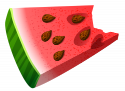 Bitten Piece of Watermelon PNG Clipart Picture | Gallery ...