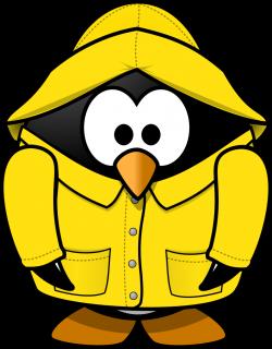 Clip Art Wet Bird 84 Best Birds Images On Pinterest Barn Owls And ...