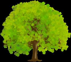 Large Green Tree PNG Clipart   Tree Art   Pinterest   Clip art, Tree ...