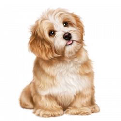 christmas_girl_and_a_puppy 52.png | Dog 3D Tubes 1 | Pinterest ...