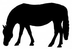 Dressage Horse Silhouette at GetDrawings.com | Free for personal use ...