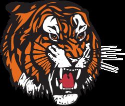 Medicine Hat Tigers - Wikipedia