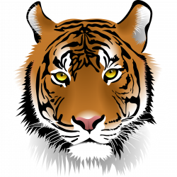 28+ Collection of Halloween Tiger Clipart | High quality, free ...