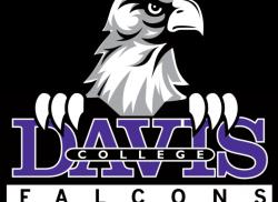 Falcon Basketball Clipart 30989 | USBDATA