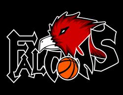 Falcon clipart basketball - Pencil and in color falcon clipart ...