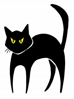 Scary Cat Transparent Clipart