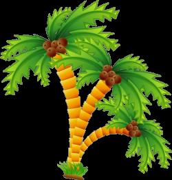 Cartoon Beach Desert island Clip art - Cartoon coconut trees 670*702 ...