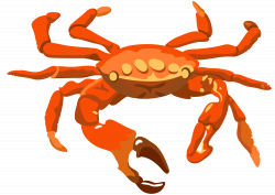 Crab Transparent PNG Clip Art Image | Gallery Yopriceville - High ...
