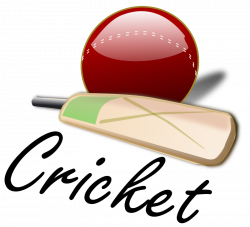 Cricket Ball Transparent PNG Pictures - Free Icons and PNG Backgrounds