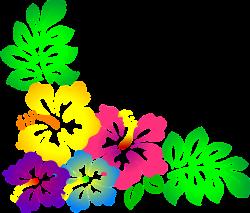 Resultado de imagem para flores amarelo e branco png free   moana ...