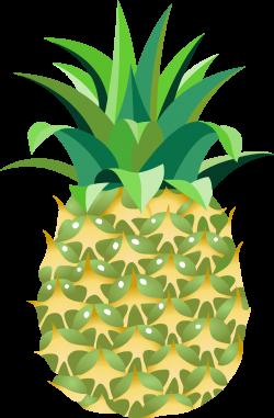 Pineapple Fourteen | Isolated Stock Photo by noBACKS.com