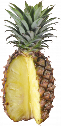 Pineapple Thirty-one | Isolated Stock Photo by noBACKS.com