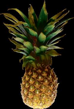 Pineapple Twenty-nine | Isolated Stock Photo by noBACKS.com