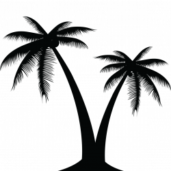 Palm Tree Silhouette at GetDrawings.com | Free for personal use Palm ...
