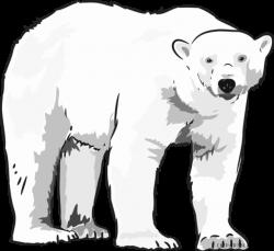 Polar Bear Clipart - Page 3 of 5 - ClipartBlack.com