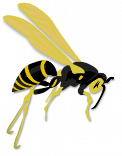 OnlineLabels Clip Art - Flying Wasp