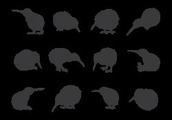 kiwi-bird-silhouettes-vector.png (700×490)   fonts & tattoos ...